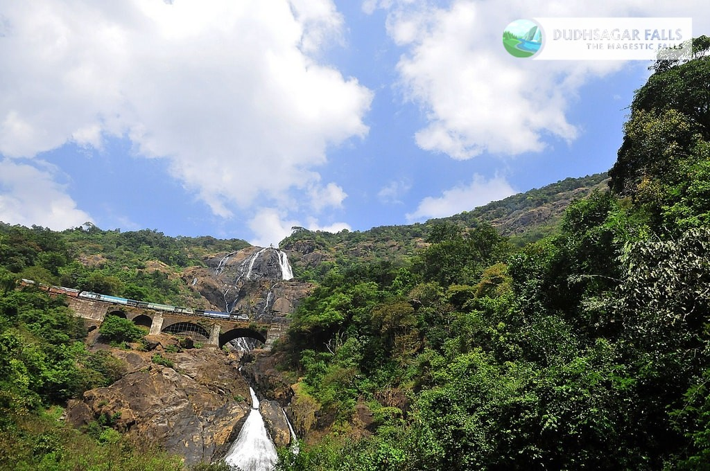 Dudhsagar waterfalls trip from Bangalore