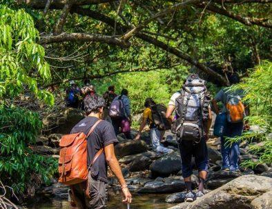 dudhsagar-falls-Trekking