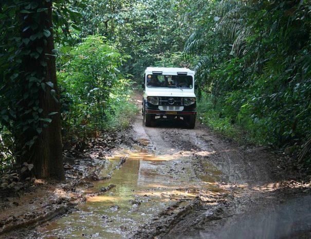 dudhsagar-jeep-safari-Bhagwan-Mahaveer-Sanctuary-goa-.jpg