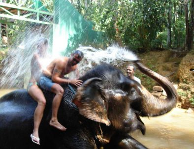 elephant-shower at spice plantation Goa