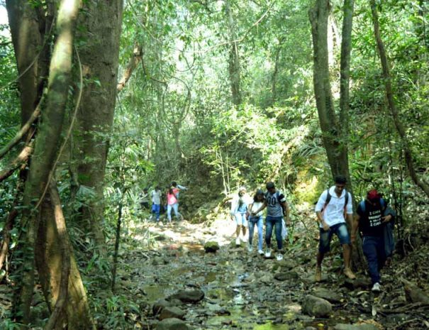 trekking-to-tambdi-surla-falls-temple-goa