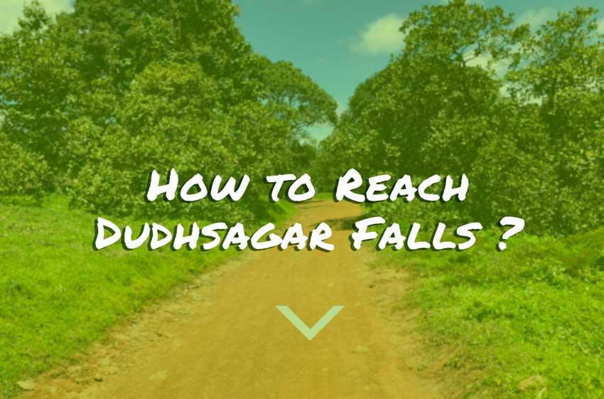 how-to-reach-dudhsagar-falls